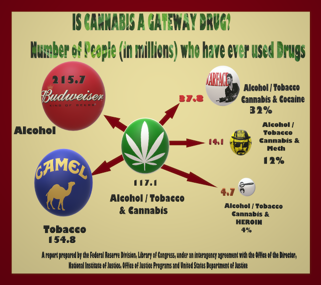 A flow chart representing correlation between cannabis use and other illegal drugs