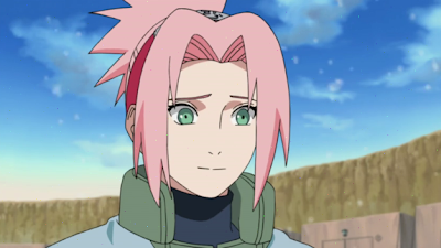 Naruto Shippuden Episode 313 Subtitle Indonesia