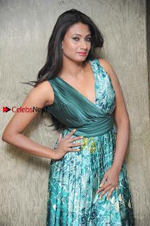 Actress Vinaya Pos at Haalu Thuppa Movie Press meet  0003.jpg