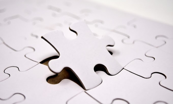 The Puzzle Piece