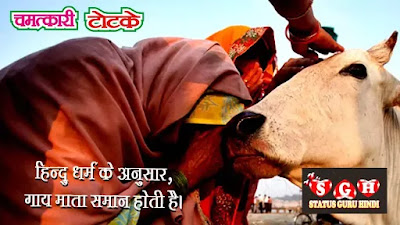 Gau mata Status in Hindi | Best Cow Status | Gau Seva Quotes , Hindi Status, Images, sanatan dharma, whatsapp, गाय के टोटके, गौ सेवा स्टेटस, गौ माता best hd, गौ माता के सुविचार फोटो, गाय के चमत्कार भरे स्टेटस |  गौ माता quotes, Gau mata Status in Hindi Images, Gau Mata quotes, Best Cow Status in Hindi, Best Gau Mata Quotes Status , Gau Mata Whatsapp Status Hindi, Gau mata Status in Hindi