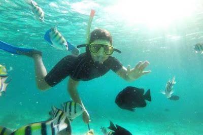 snorkeling vs diving