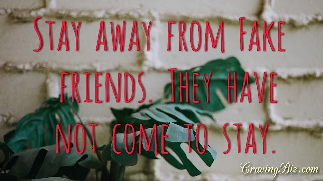 Fake Friends: And How They Mislead