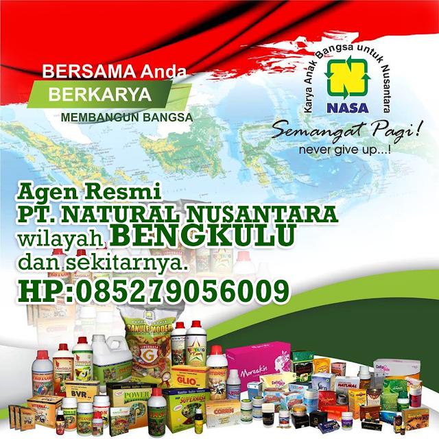 Alamat Agen/Distributor Resmi NASA Wilayah Bengkulu dan Sekitarnya.