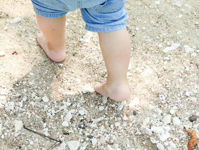 parcours pieds nus zoo de paris