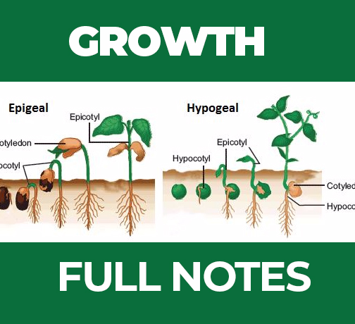 GROWTH FULL NOTES | FORM FOUR BIOLOGY