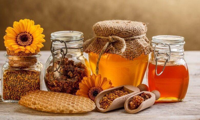 سعر جرام غذاء ملكات النحل البلدي في مصر 2021