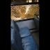 Vídeo - Varios ómnibus de la Ciudad 18 de Mayo sufren vandalismo