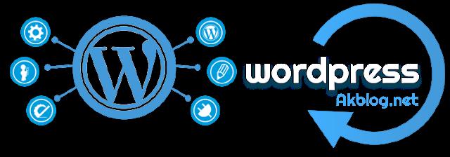 Wordpress Hosting Hakkında Bilmeniz Gerekenler Nelerdir?