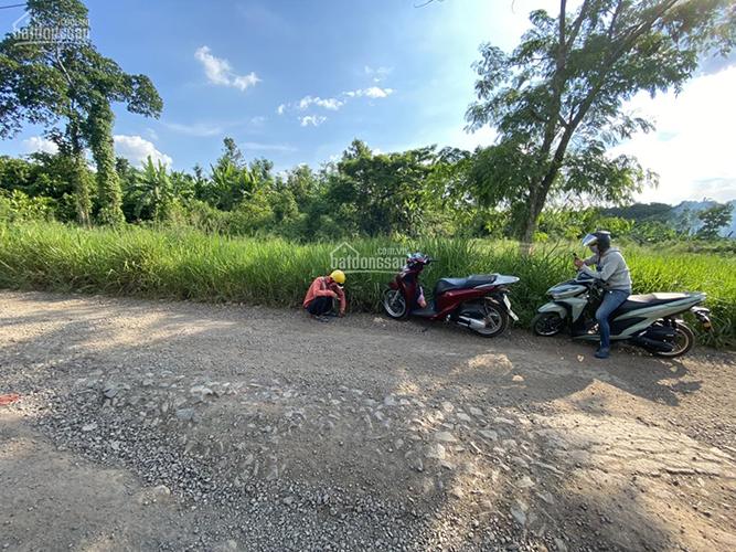 Đất Sào Giang Điền