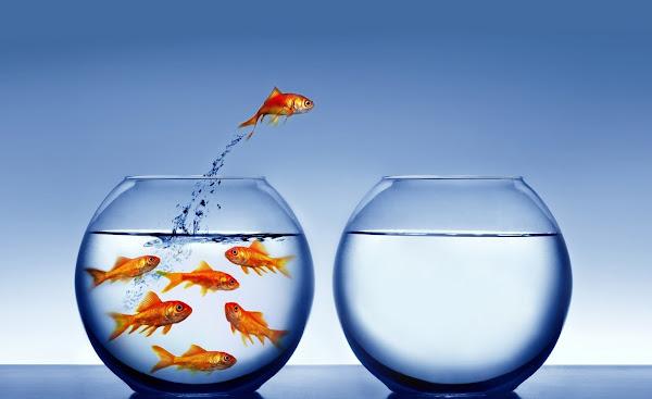 3 Consejos para dejar ir clientes o colaboradores