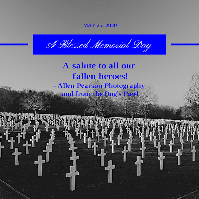 A Blessed Memorial Day (C) Allen Pearson Photography