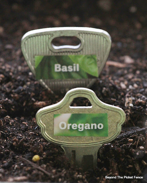 Plant Markers DIY