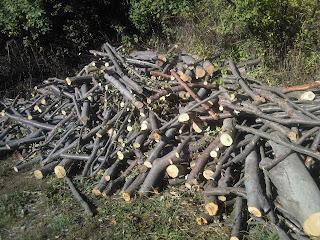 нарязани дърва