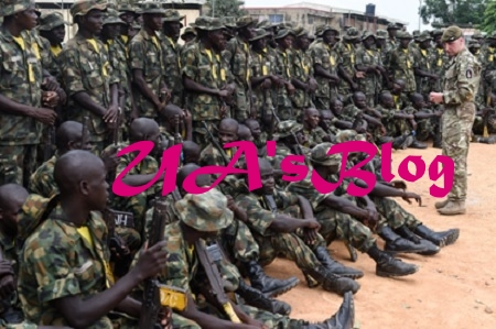 "Group lauds Nigerian Army over ""Operation Cat Race"" .....wants Nigerians to support operations to end crime"
