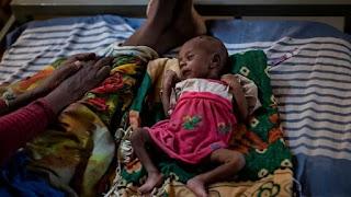 41 million face famine threat, UN bids to avert crisis