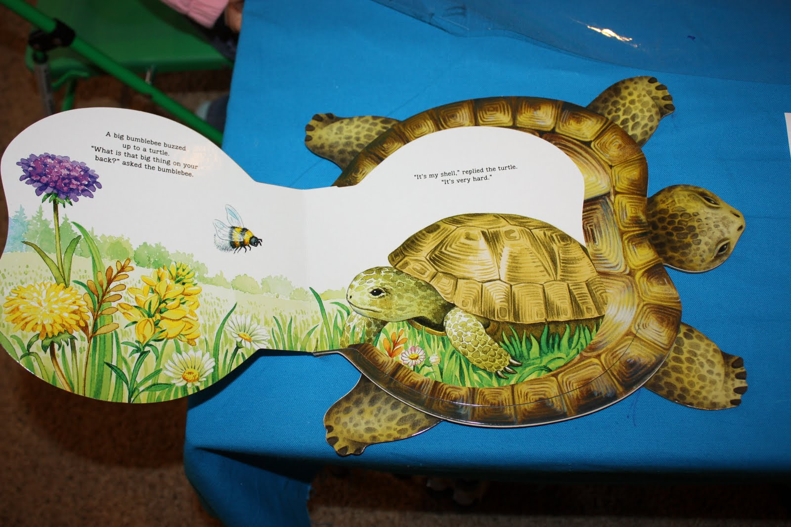 Sunshine Preschool T Is For Turtle