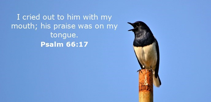 I cried out to him with my mouth; his praise was on my tongue.