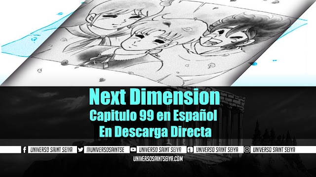 Next Dimension Capitulo 99 en Español