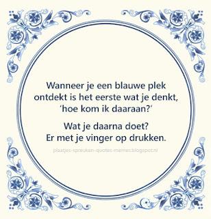 afbeeldingen met nederlandse spreuken