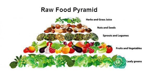 Apa Itu Diet Rawfood ? Cocok Buat Kamu !
