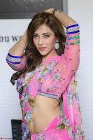 Angela Krislinzki Rogue Movie Fame Telugu Actress in Saree Backless Choli 034.JPG
