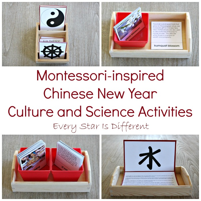 Chinese New Year Culture and Science Activities