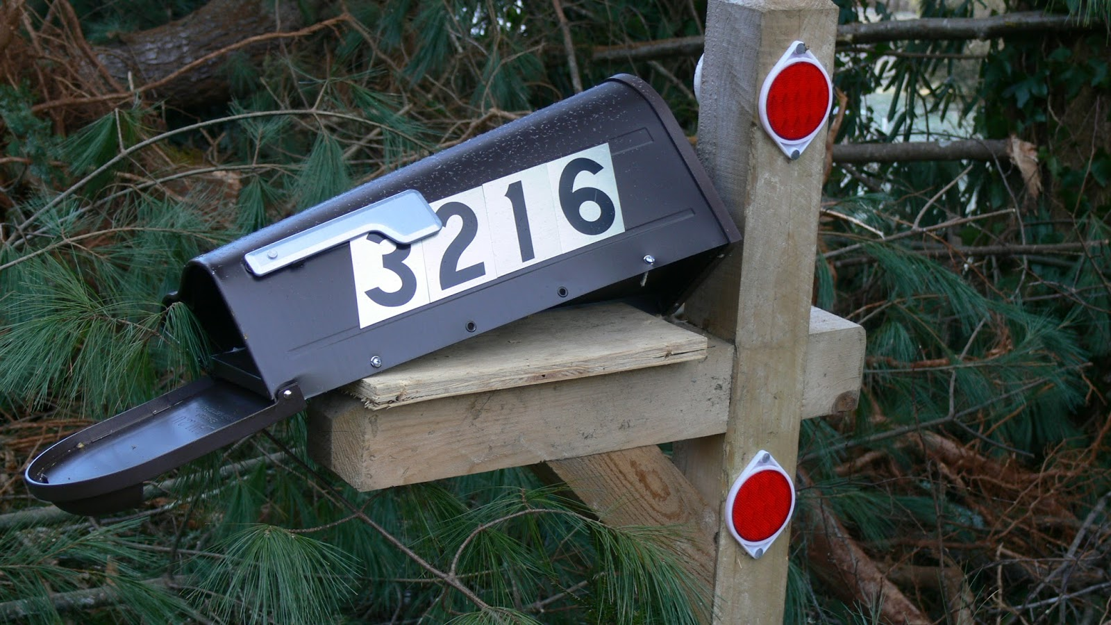 Mailbox damaged by a tree carried downslope by the slide