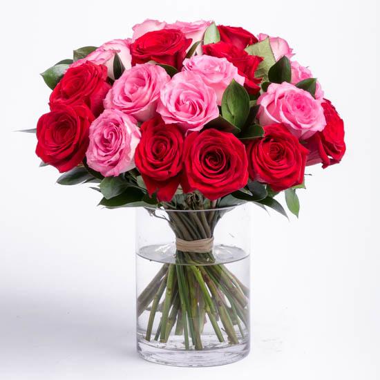 bunga mawar pink bagus