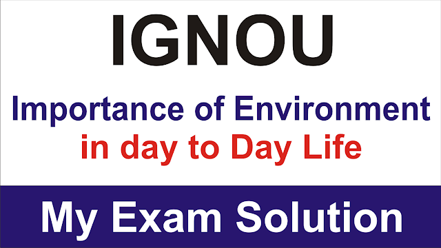 ingou importance of environment in day to day life