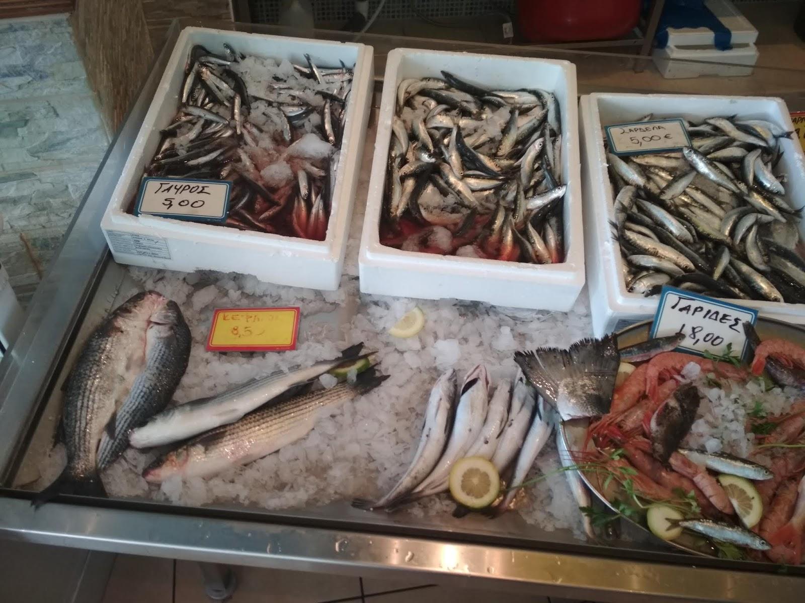 ιστοσελίδα γνωριμιών μπλε ψάρια επαγγελματίες online dating ιστοσελίδα