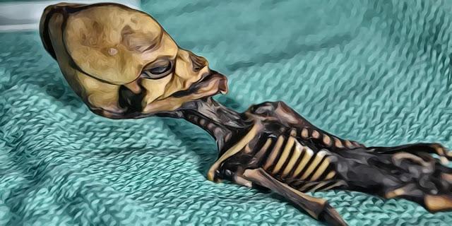 No es Ata, ni Sirius, ni Alien: El cuerpo robado de una niña chilena