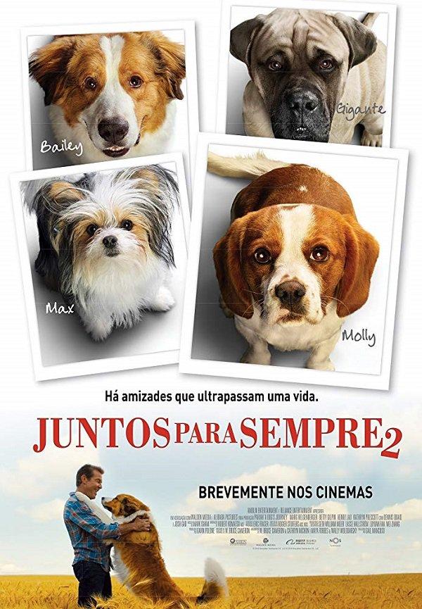 Hành Trình Của Chú Chó Bailey - A Dog's Journey