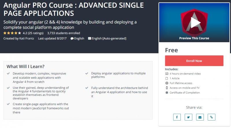 100 Free Angular PRO Course  ADVANCED SINGLE PAGE APPLICATIONS