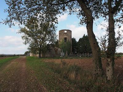 Moulin à vent  de Tru la chapelle de brain 35