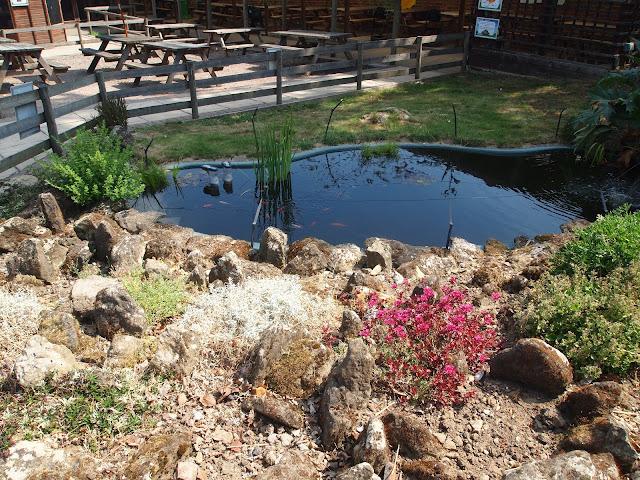 Godstone Farm, Surrey Review