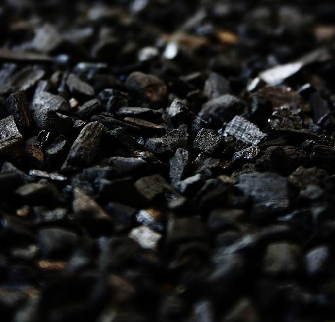 Proceso de fabricación del carbón activado