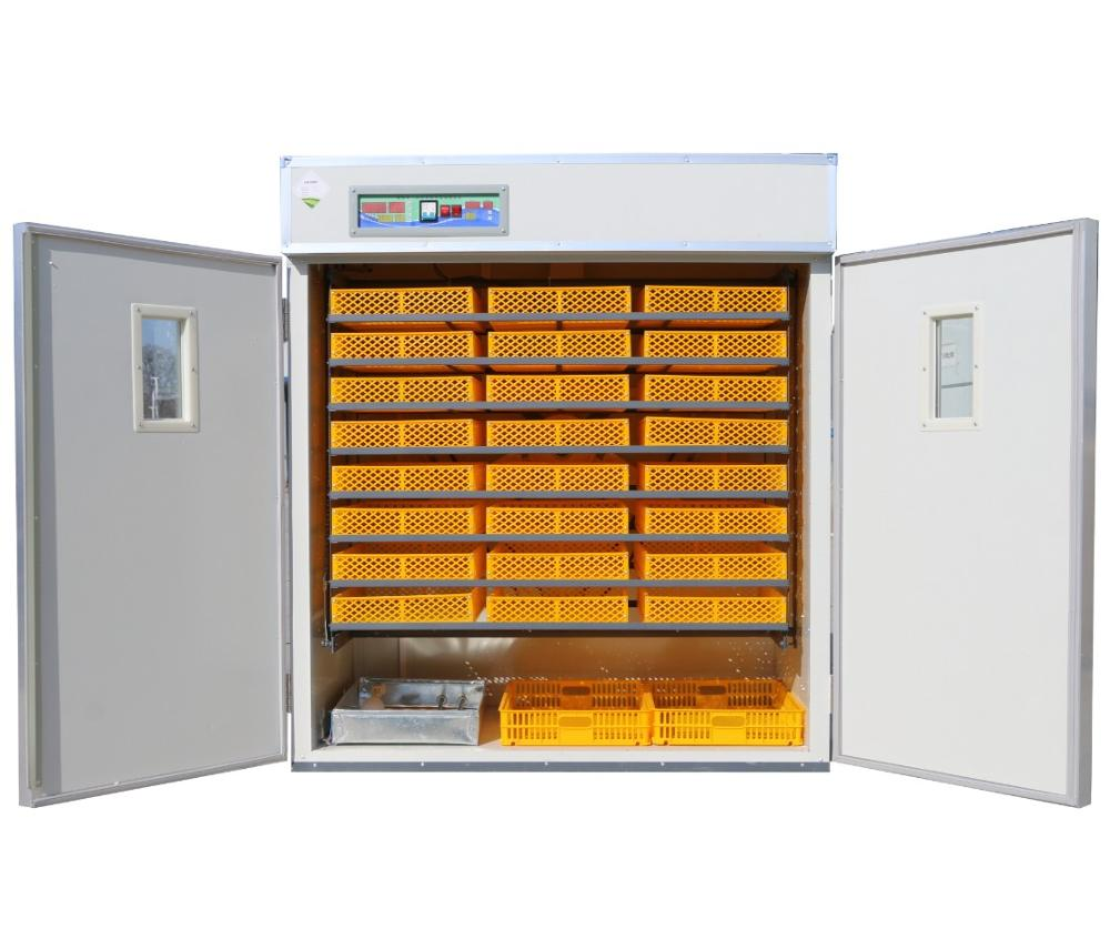 Your Poultry Business Need Egg Incubator! Learn Why