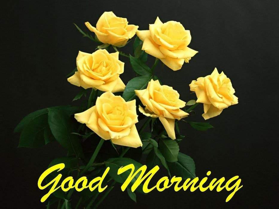 Good Morning flower Wishes for Instagram
