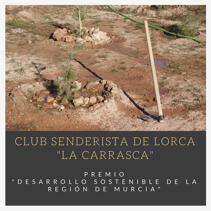 Planta un árbol por Lorca