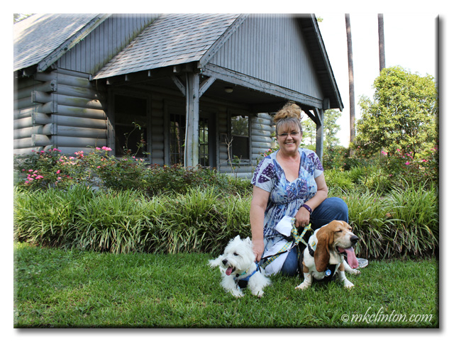 Spending time at the American Rose Center with Bentley Basset Hound and Pierre Westie