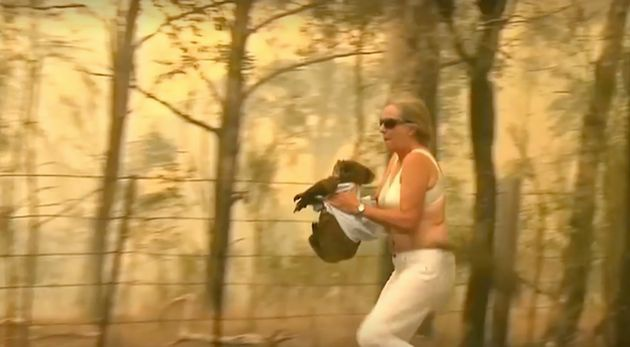 The woman undressed and hugged the koala running away from the fire