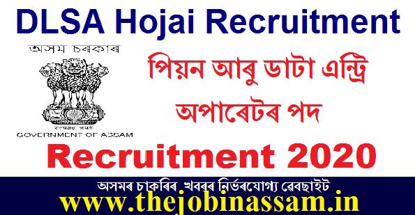 District Legal Services Authority, Hojai Recruitment 2020