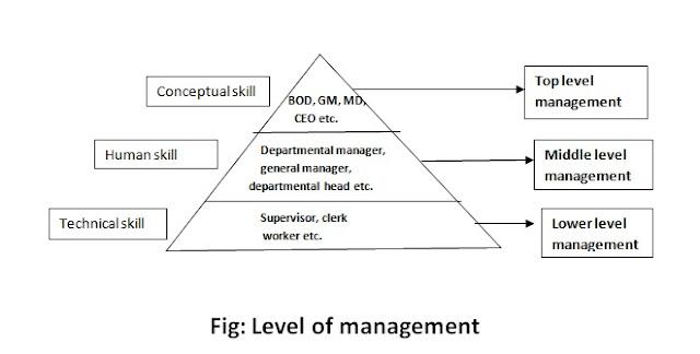 level-of-management