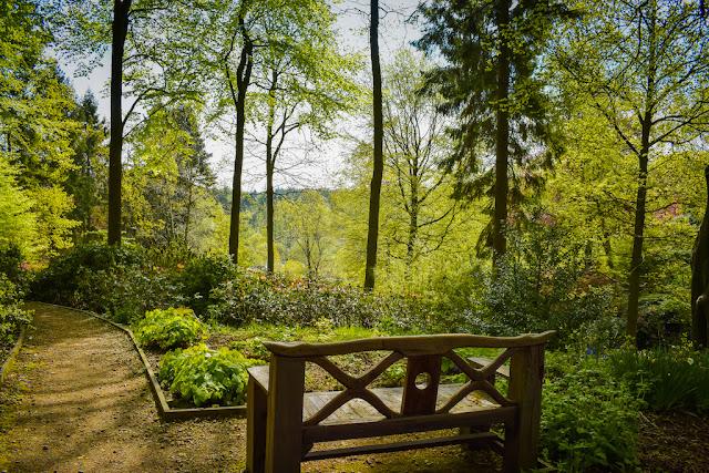 Himalayan Garden and Sculpture Park bench overlooking the park
