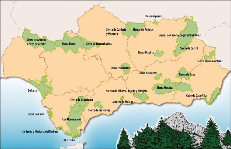 Andalousie - Parcs Naturels - 760.jpg