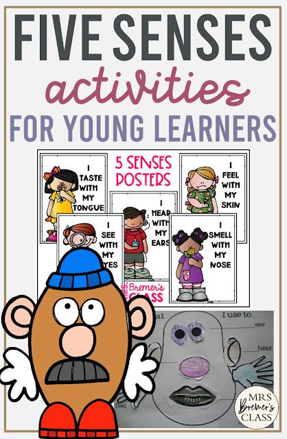Five Senses unit with activities, student booklets, craftivities featuring Mr Potato Head, worksheets, and posters for the 5 senses for Kindergarten & First Grade