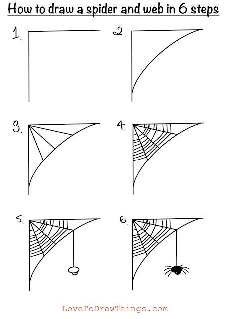 Spider and web drawing