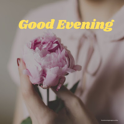 have a nice evening pictures