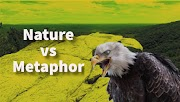 Metaphorical Use of Nature in the Poem, The Eagle by Tennyson